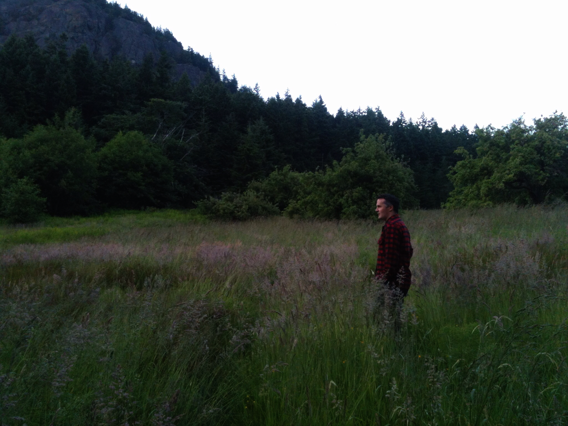 Death is Real: Mount Eerie and the Art of Expressing 'Emptiness' through Songwriting